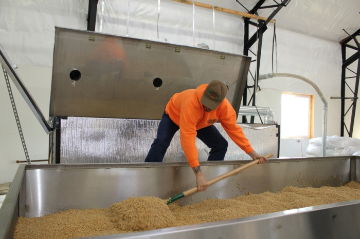 Micro Malting is hands on hard work.. Eric flips and rakes the barley to help things along.