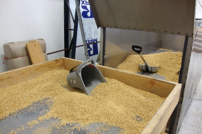 Eric loads the malt to the sifting table to remove the chaff and chits. Every batch is sifted by hand.