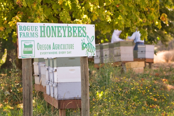 Rogue Farms Honey and Honey Spirits,. Brought to you by the 7,173,892 honeybees of the Rogue Farms Apiary.