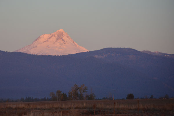 Sunrise on Mt. Hood. This ancient giant casts a rain shadow over the barley that protects us from winter storms and gives us 300 days of sunshine.