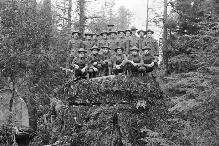 Members of the Army Spruce Division  at a logging camp near Newport in 1918.