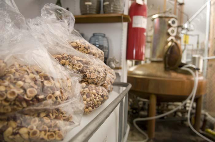 Fresh roasted hazelnuts at the Rogue Spirits rum distillery.