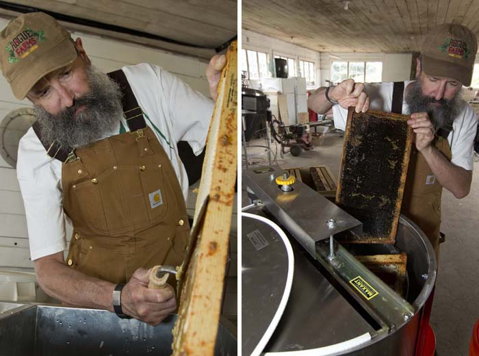 Brewmaster John Maier removes the wax seal from the frames and places them into the extractor.