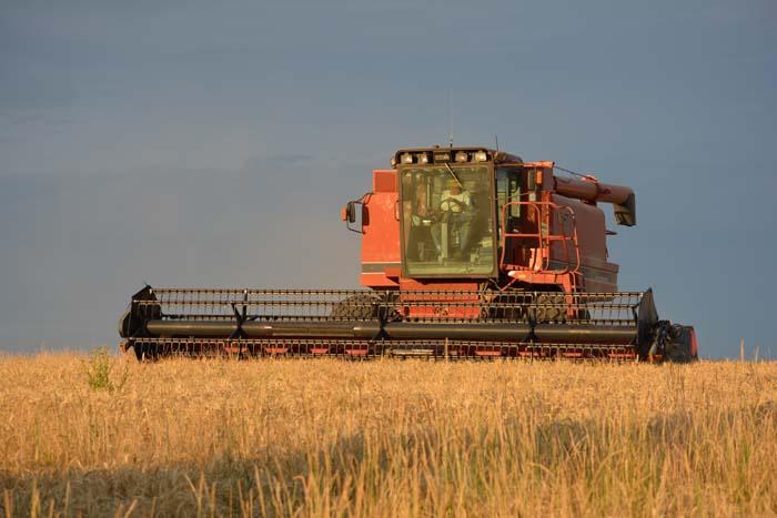 Risk Harvest